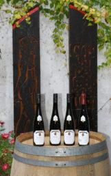 Foto unsere 4 Selectionsweine aus der Kollektion 2020